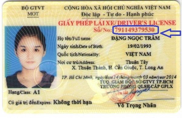 cách kiểm tra giấy phép lái xe